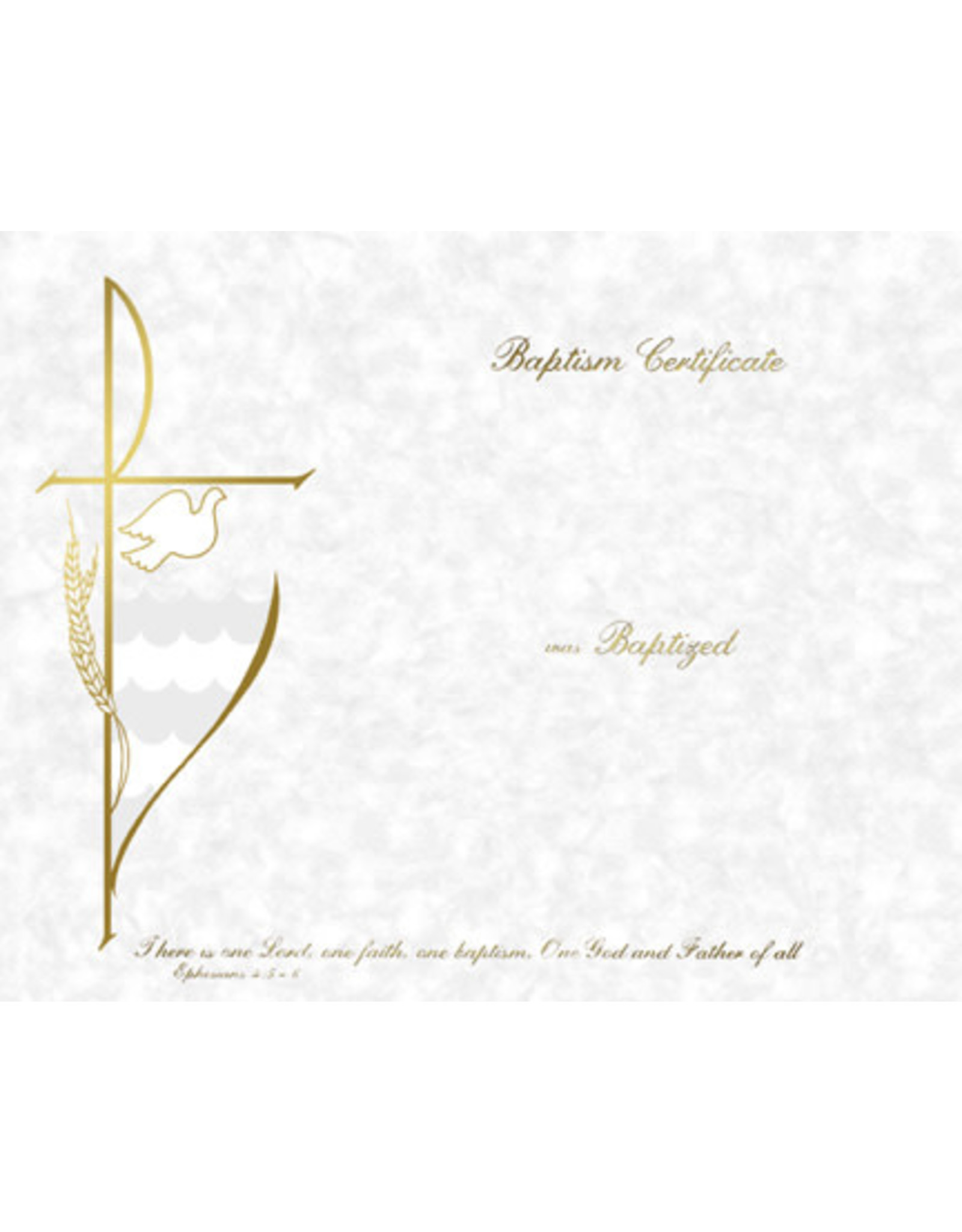 Spanish Baptism Certificates Create-Your-Own (50)
