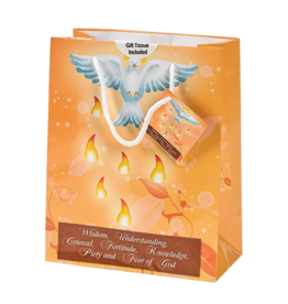 Confirmation Gift Bag - Small, Orange