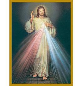 Mass Cards-Living-Divine Mercy (100)