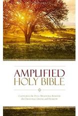 Amplified Bible (AMP) Large Print