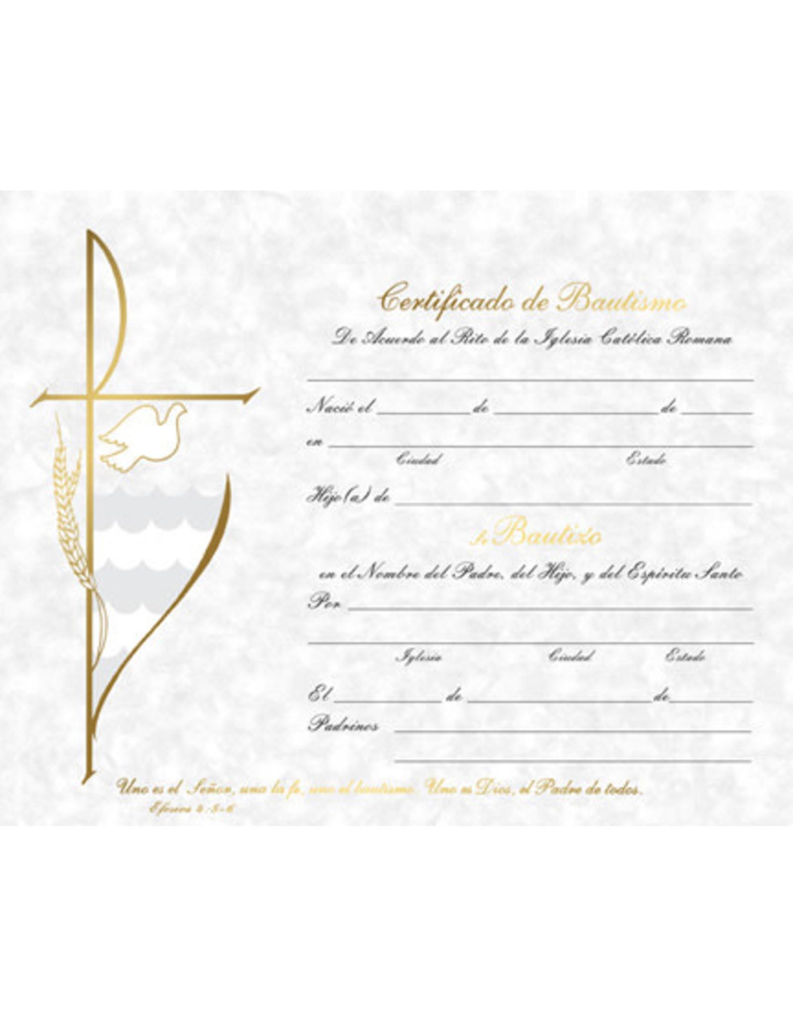 Certificate Baptism (Spanish) (50)