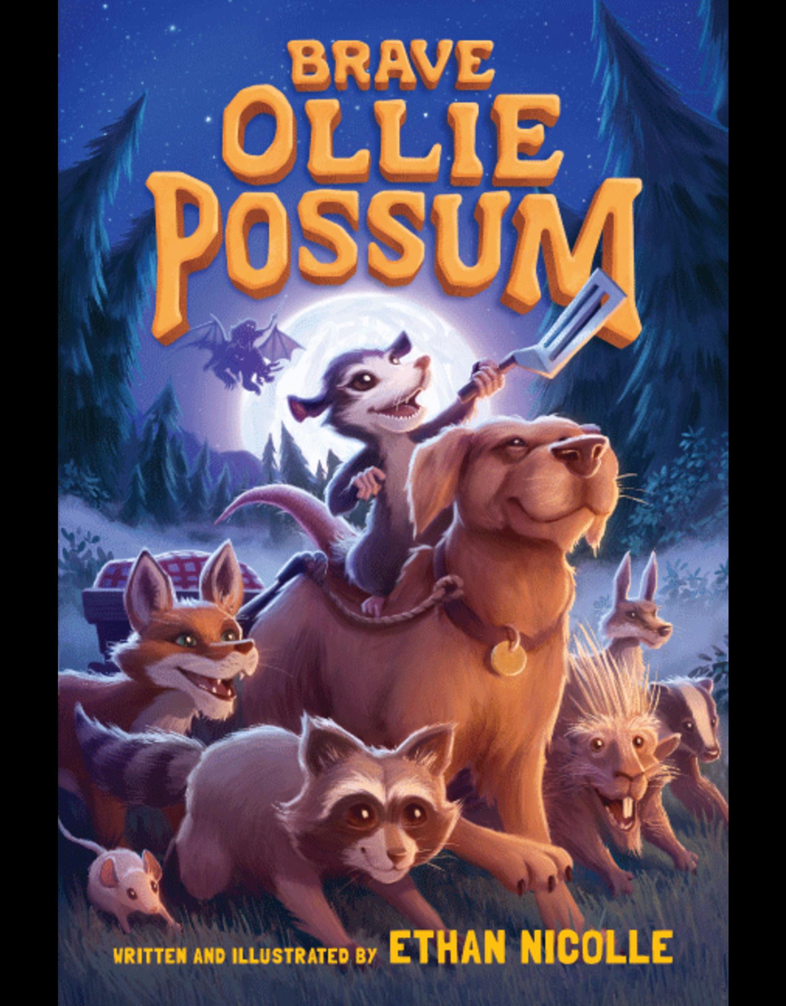 Brave Ollie Possum, Hardback (ETHAN NICOLLE)