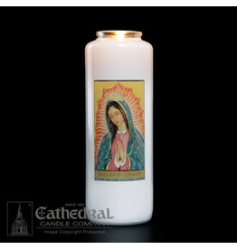 6-Day Our Lady of Guadalupe Glass Candles (12)