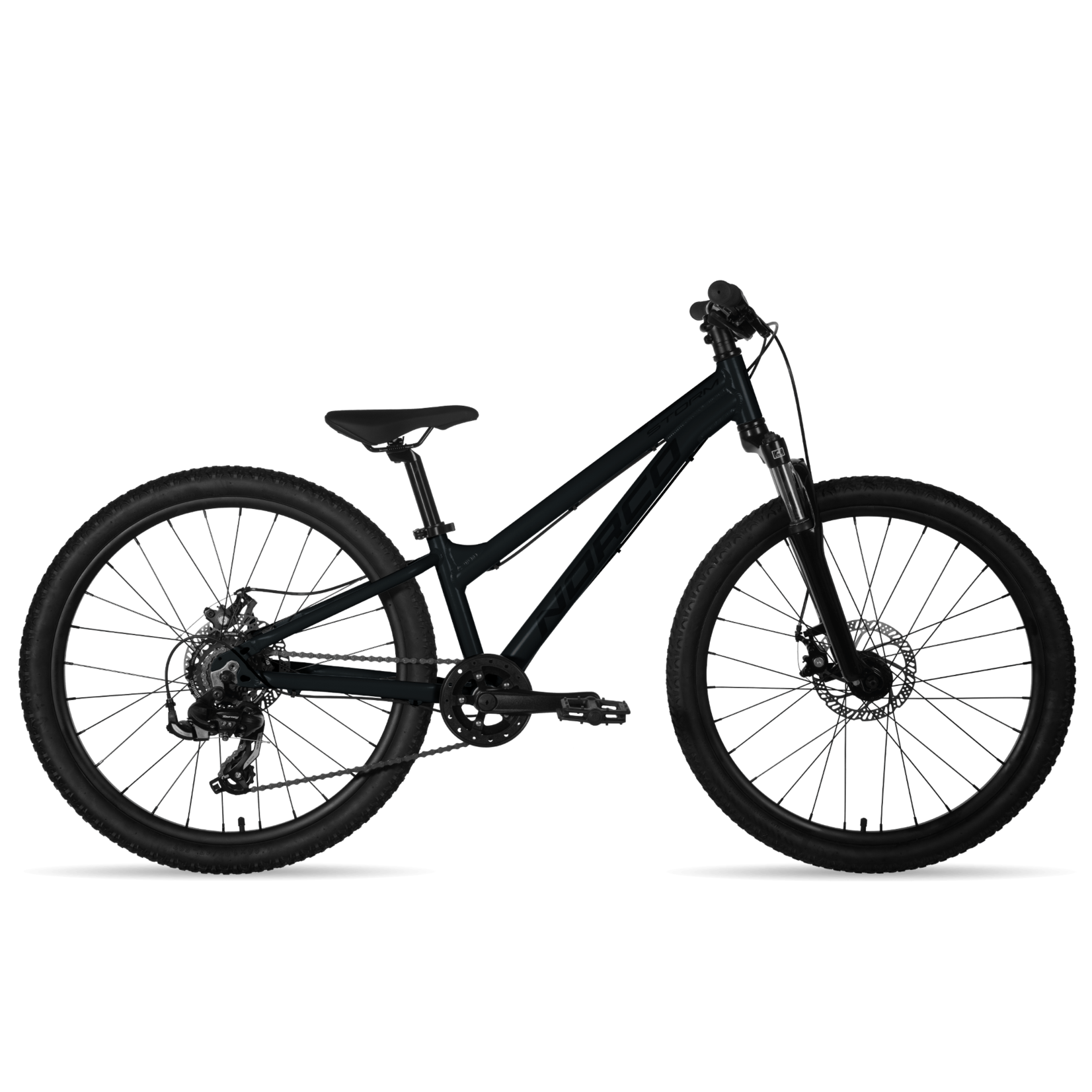 Norco 2021 Norco Storm 4.1