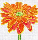 Canvas ORANGE DAISY  139B-23