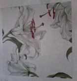Canvas CASABLANCA LILIES  C0006