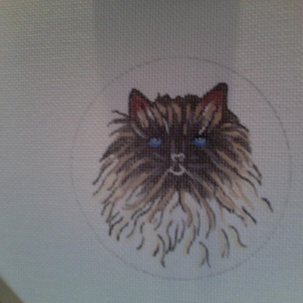 Canvas PERSIAN CAT  ND0108 - SALE REG 28.00