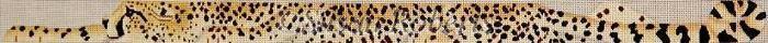 Canvas CHEETAH BELT  TTB154