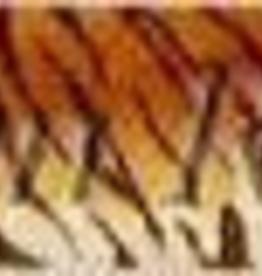 Canvas TIGER BELT  TTB122 SUSAN ROBERTS