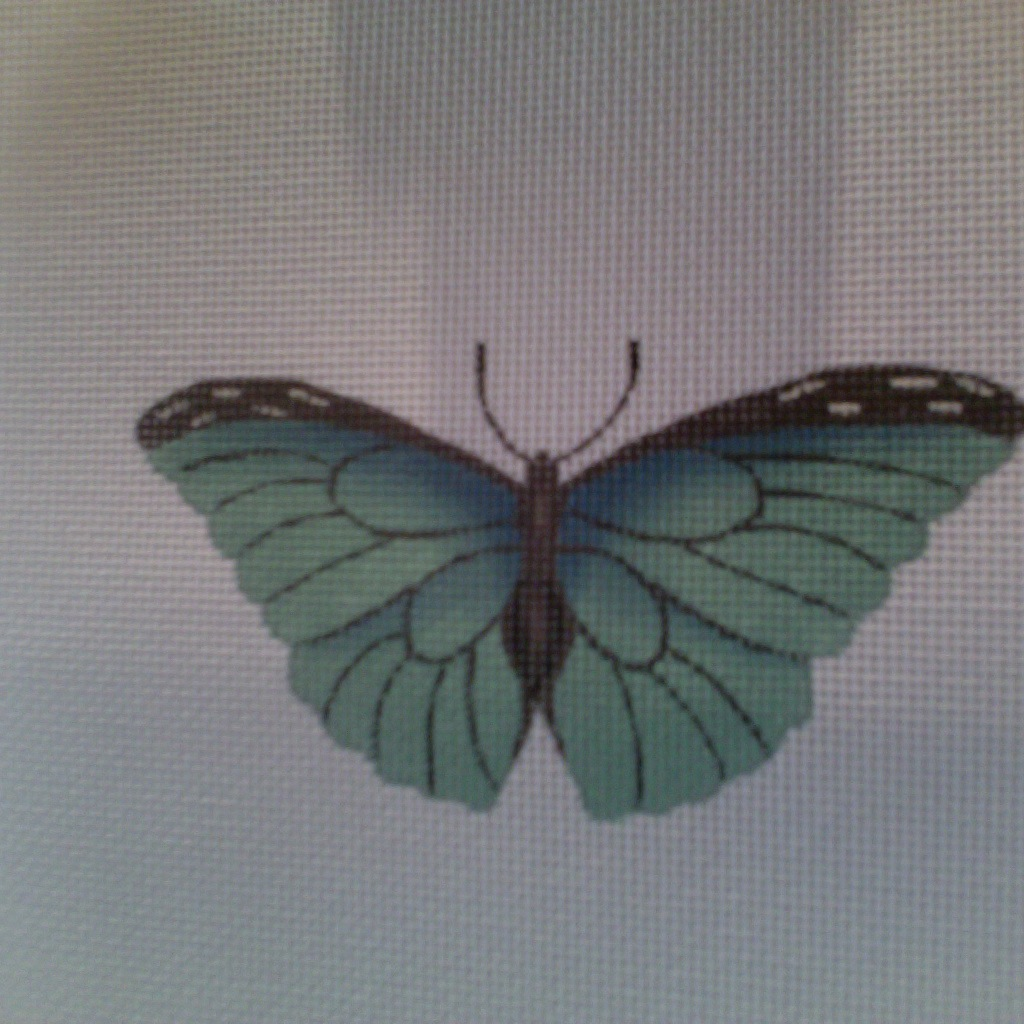 Canvas BUTTERFLY BLUE  1414C