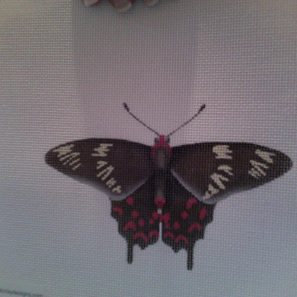 Canvas BUTTERFLY BLACK  1414E