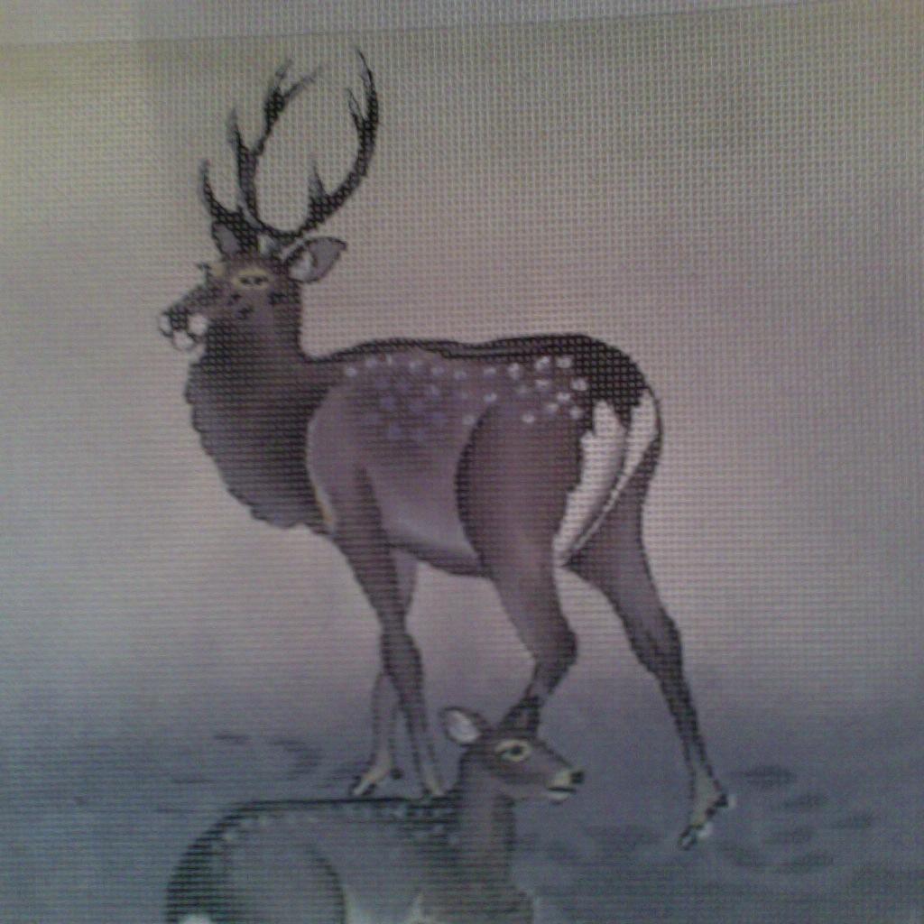 Canvas WINTER DEER  8X8  B0157