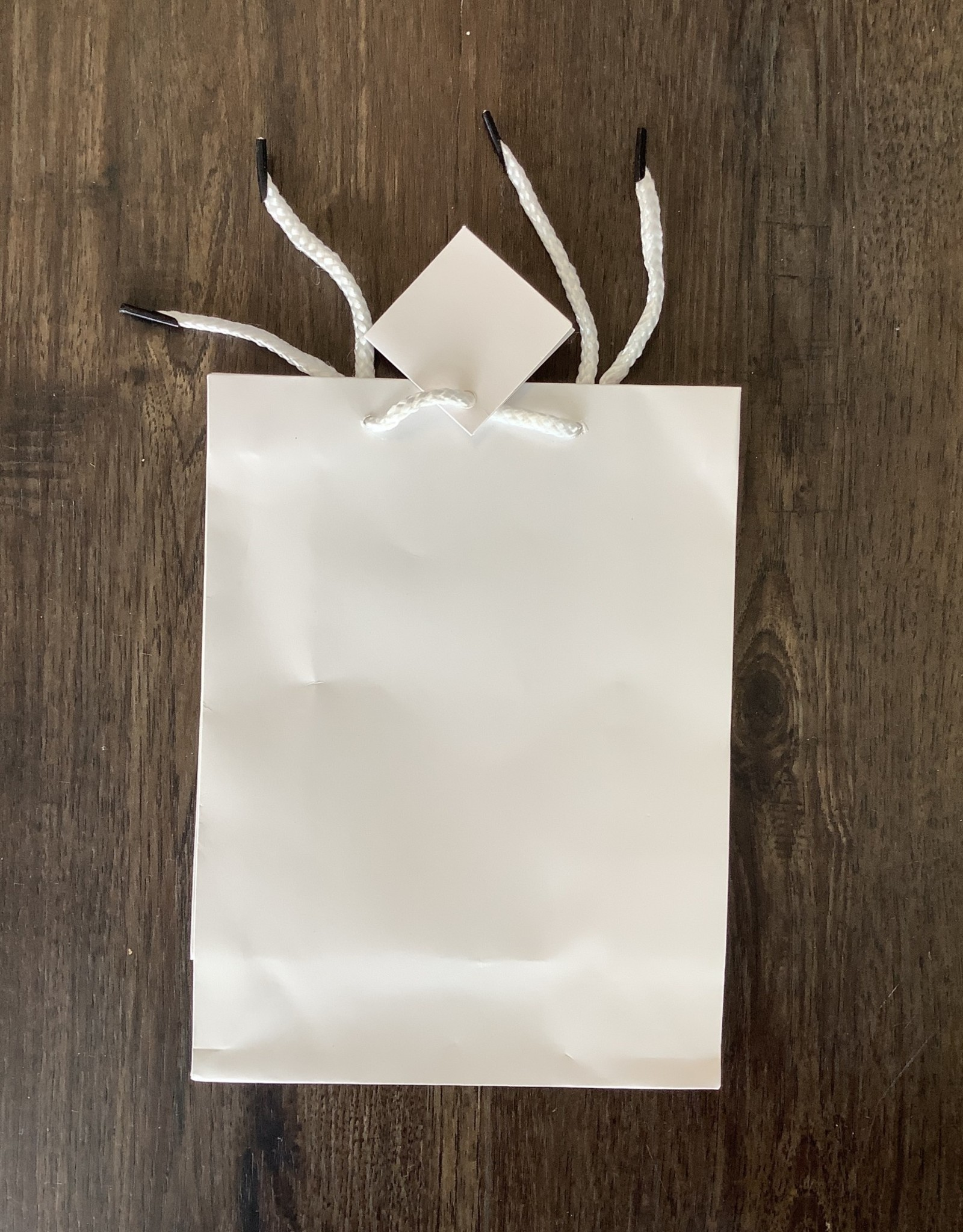 Party Club of America Sold Gift Bag SM White
