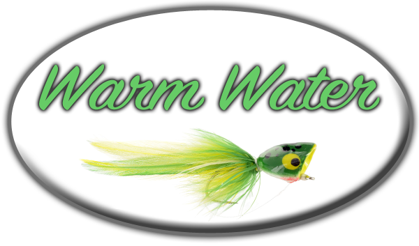 Colorado Warm Water Fly Fishing. Guided Warm Water Fly Fishing