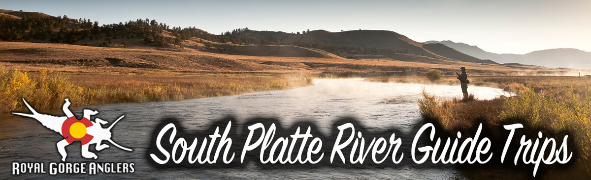 South Platte River Fly Fishing Guide Trips. Guide Trip Arkansas River, Colorado.