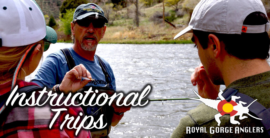 Learn to fly fish. Arkansas River Fly Fishing Guides