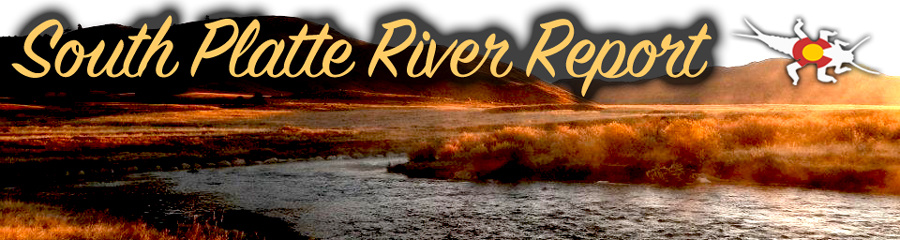 South Platte River Fly Fishing Report
