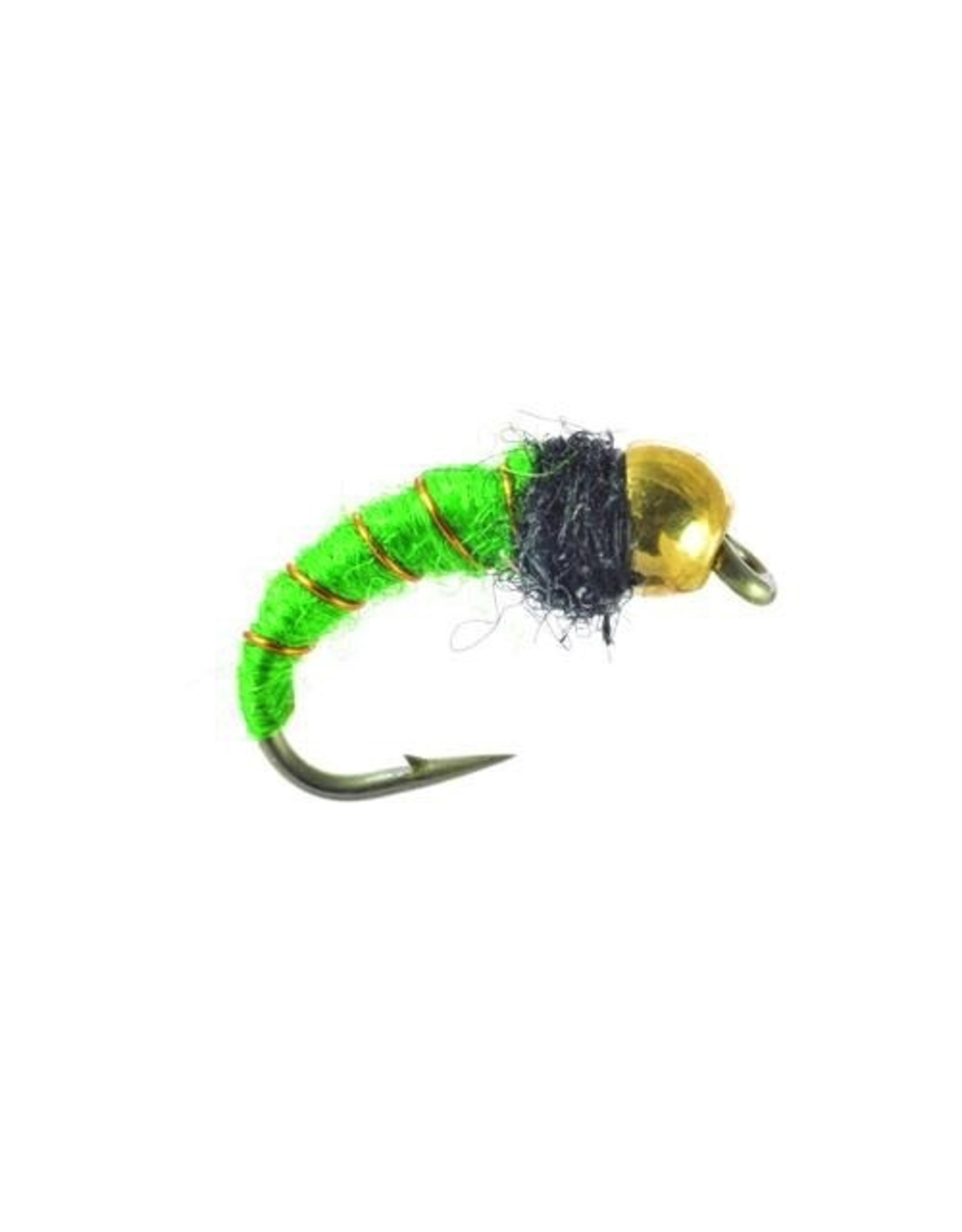 Umpqua Caddis Larva Bead Head (3 Pack)