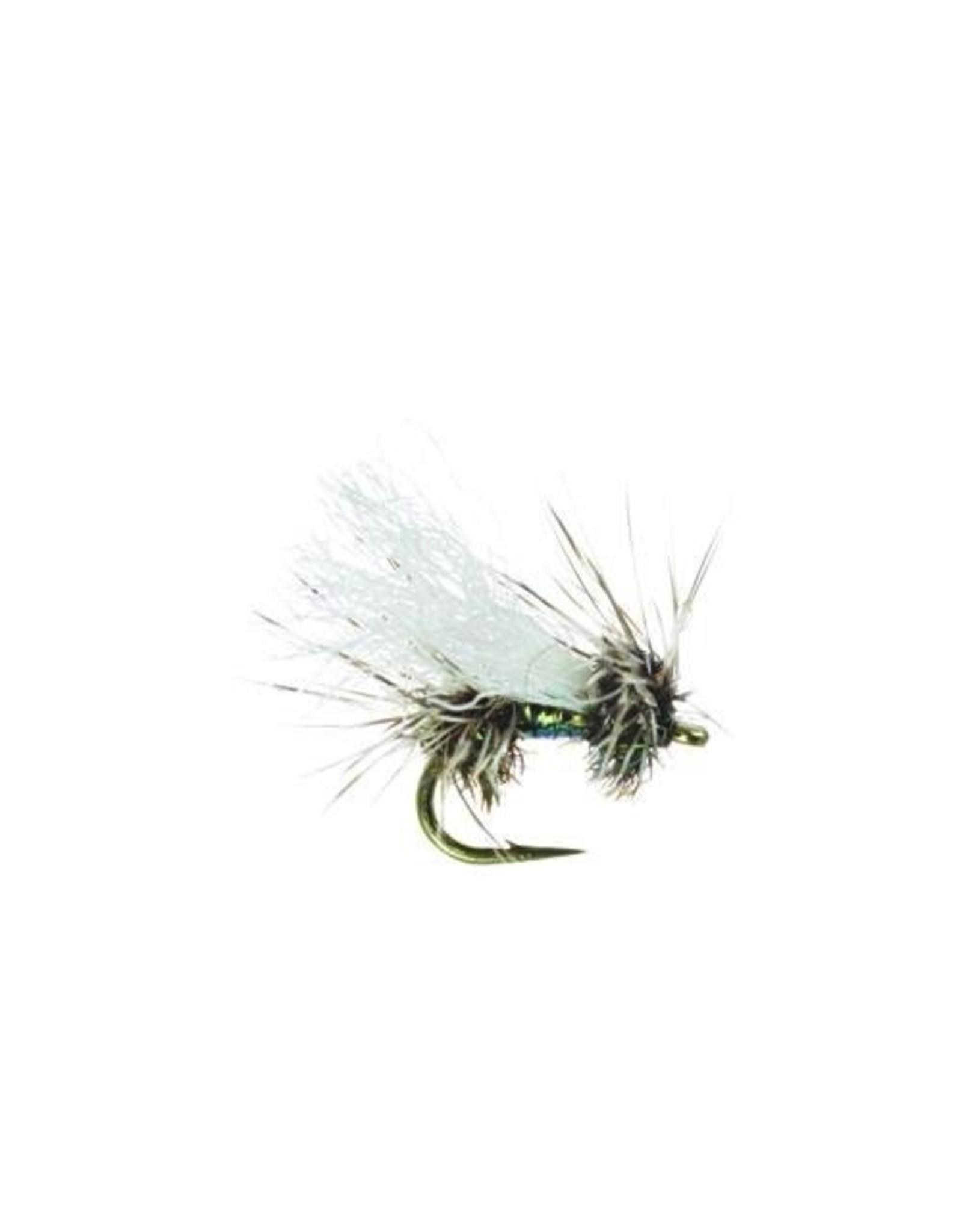 Umpqua Cluster Peacock, Quigley (3 Pack)