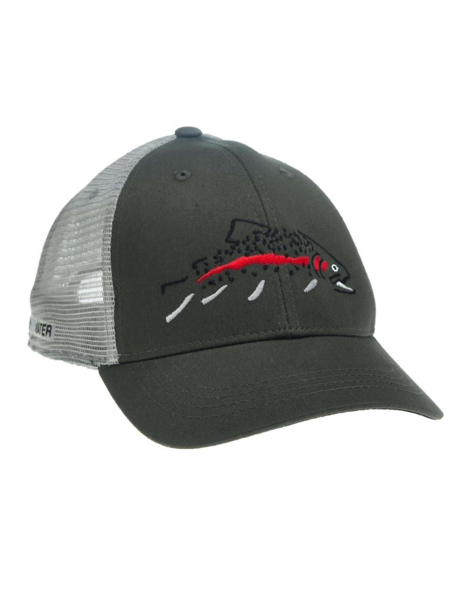 Rep Your Water Rep Your Water Minimalist Rainbow Standard Fit Hat