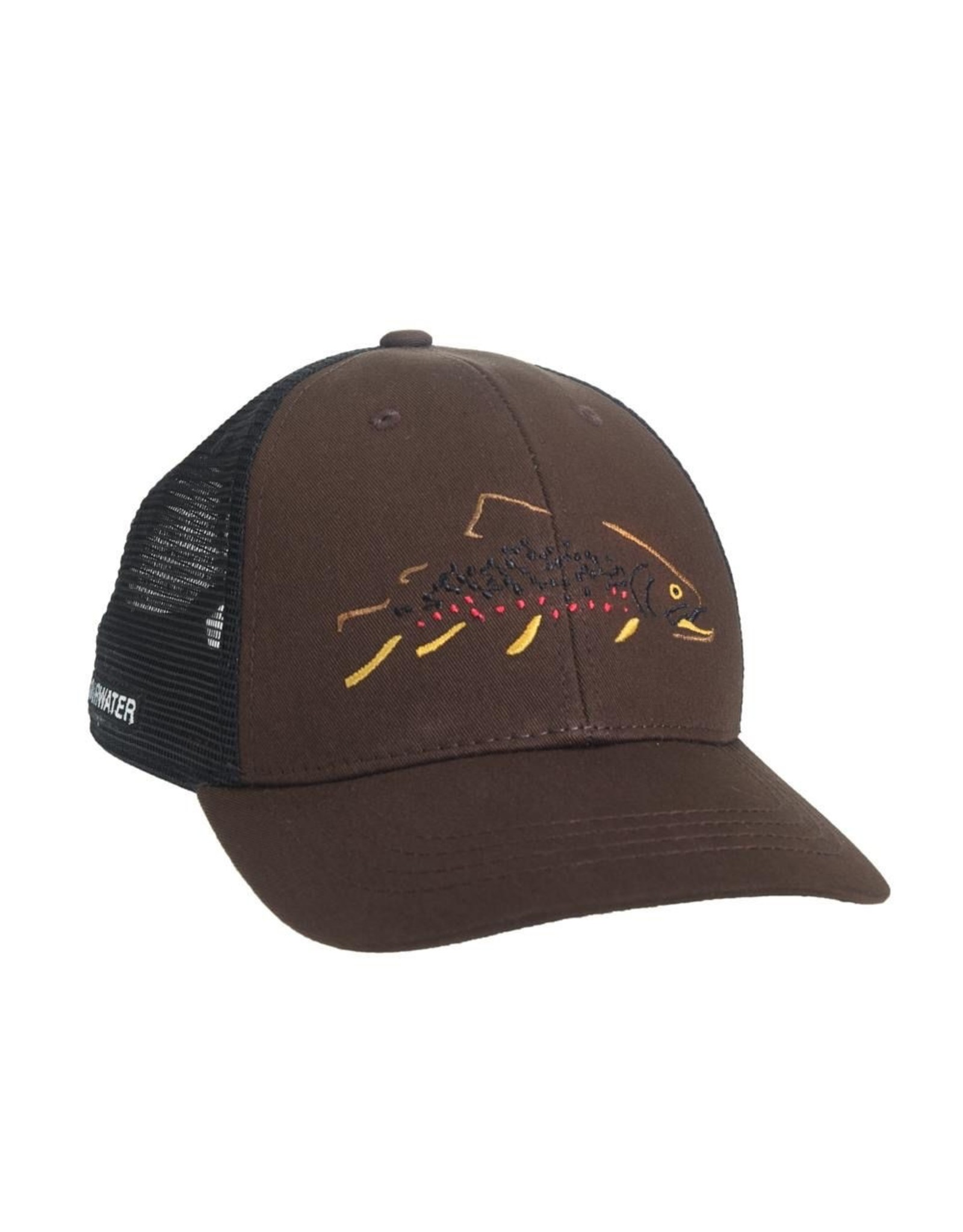 Rep Your Water Rep Your Water Minimalist Brown Standard Fit Hat