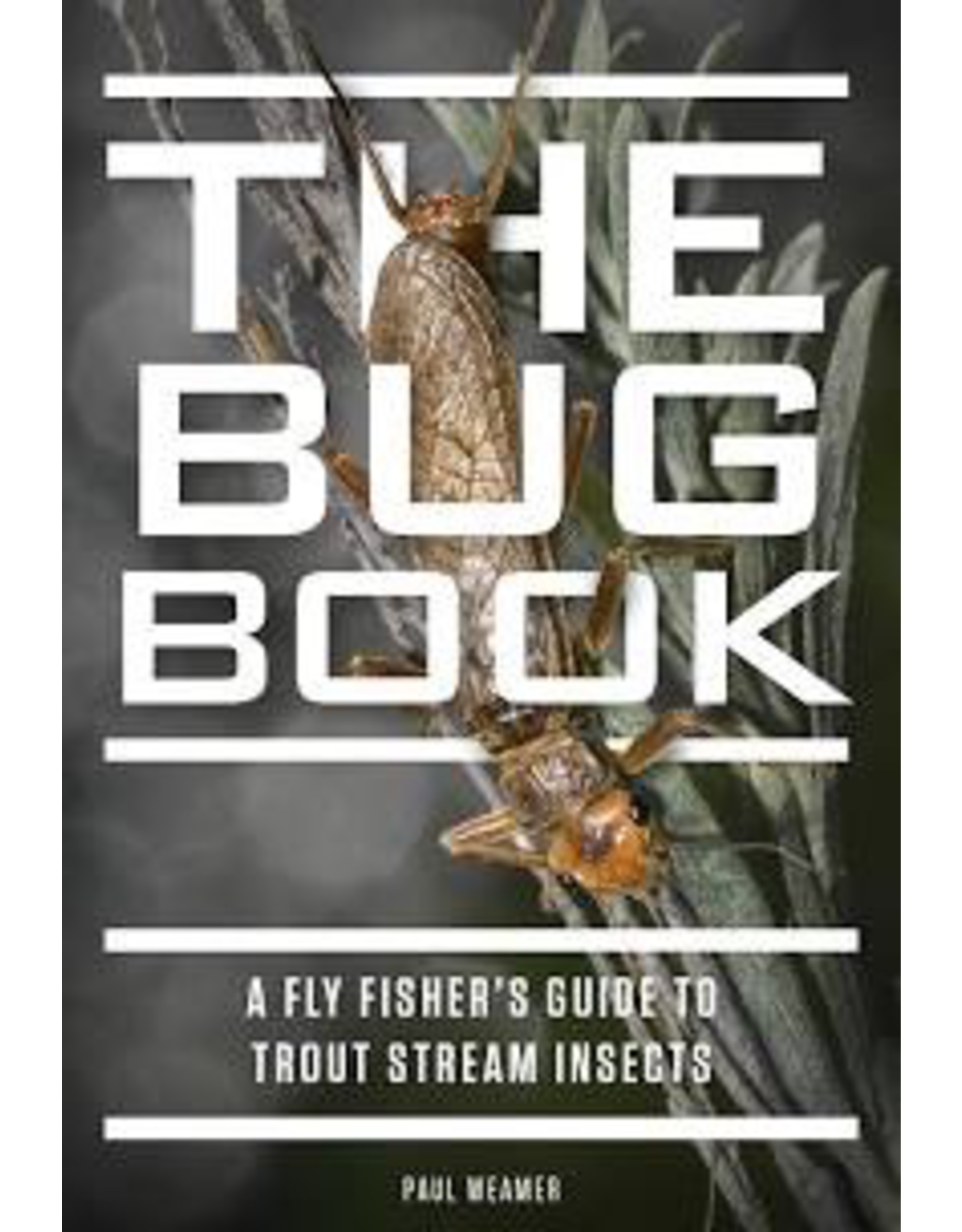Books The Bug Book by Paul Weamer