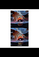 MFC Fish Gaiter (Sun Mask) Maddox's Snack