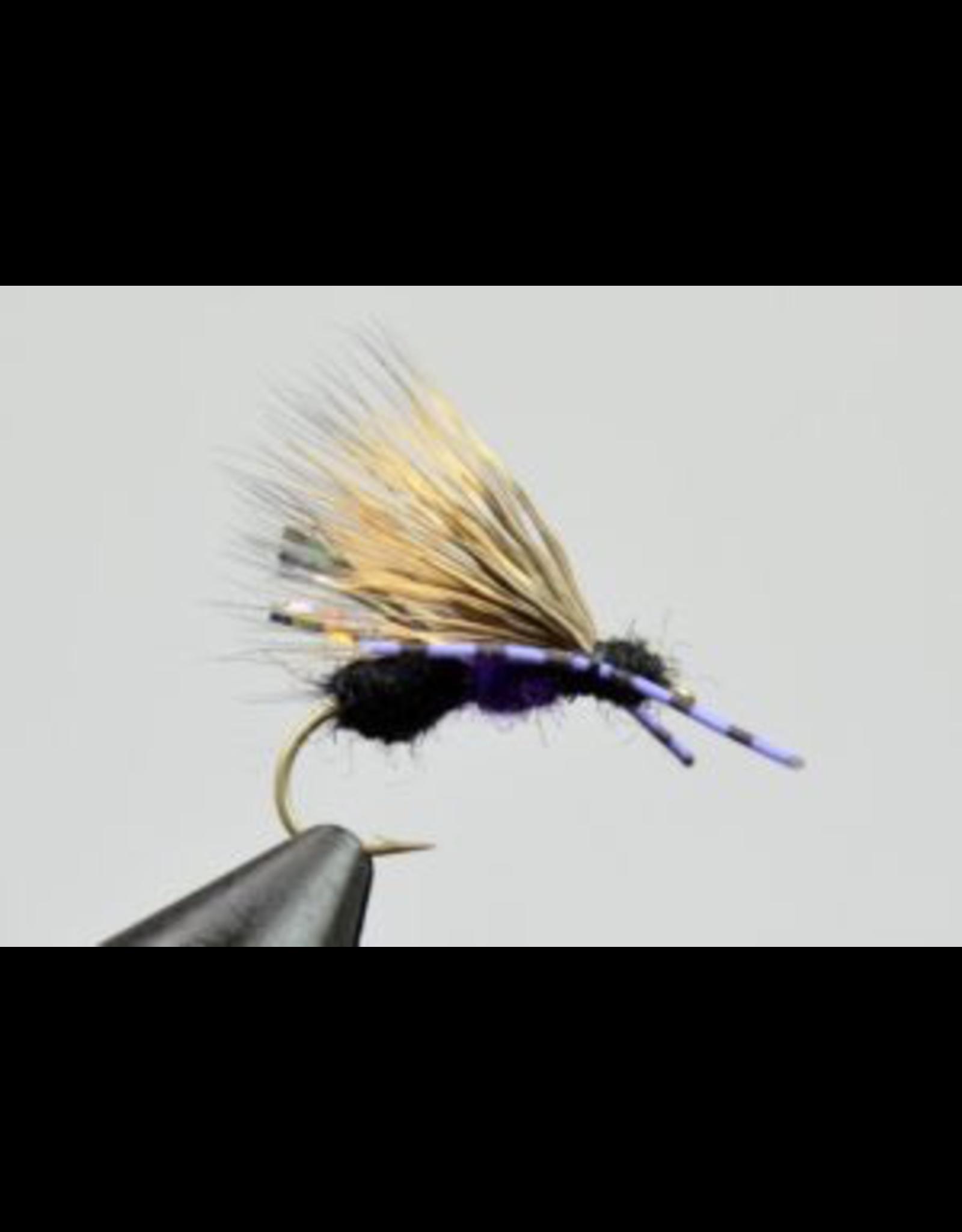 MFC Galloup's Ant Acid Black/Purple14 (3 Pack)