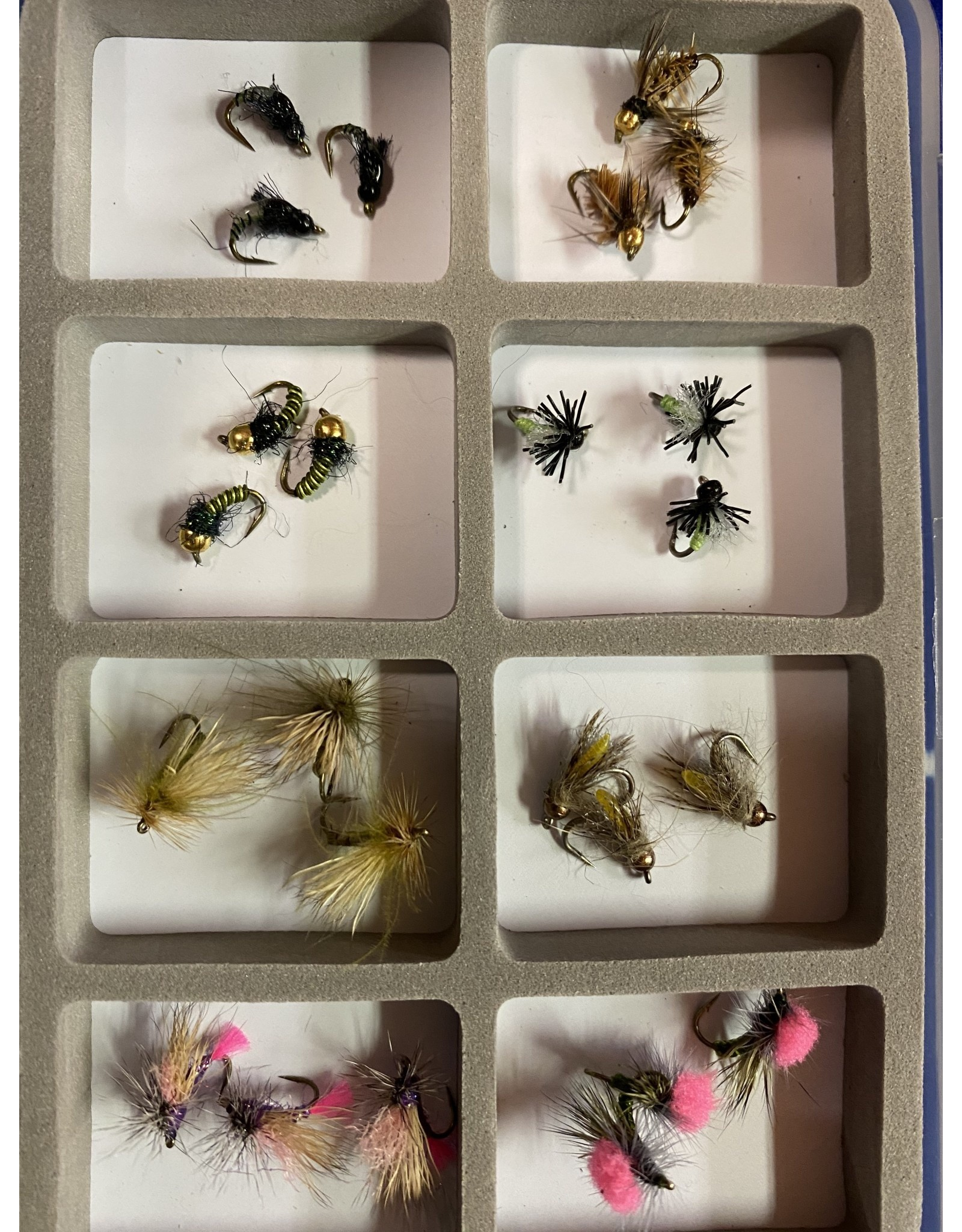 NEW Best of the Caddis