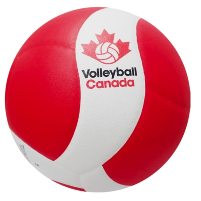 VQ200W-CAN Volleyball