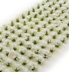 Huge Miniatures: White Flowers