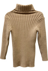 Wyld Blue Kids Taupe Kids Turtle Neck 2T