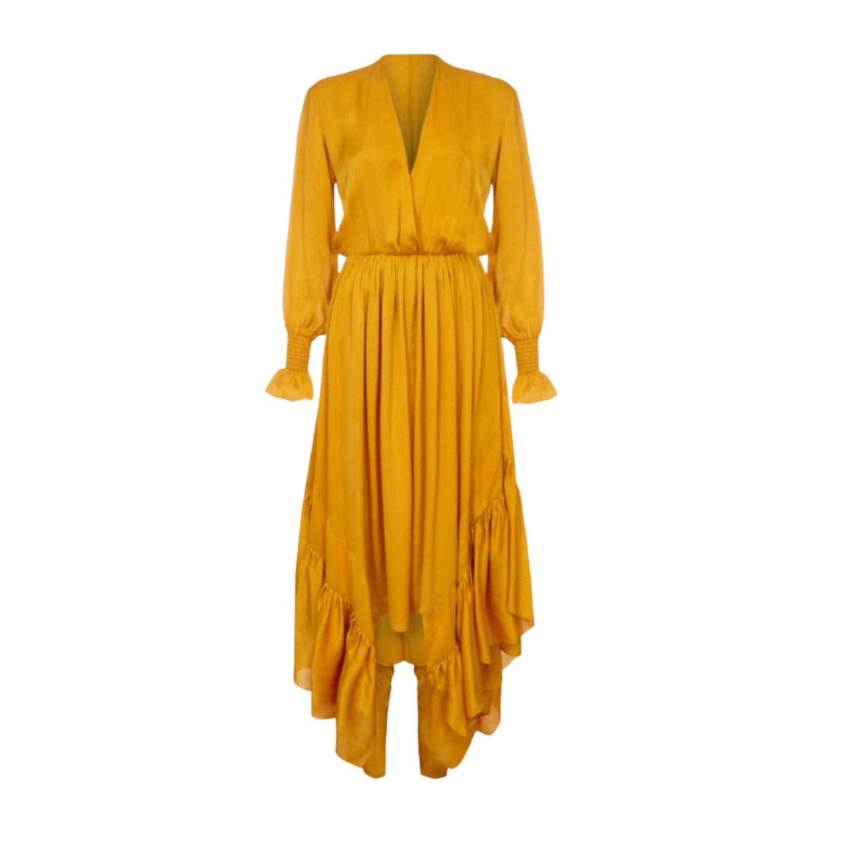 Arjé Indira Oriental Silk Long Ruffle Dress