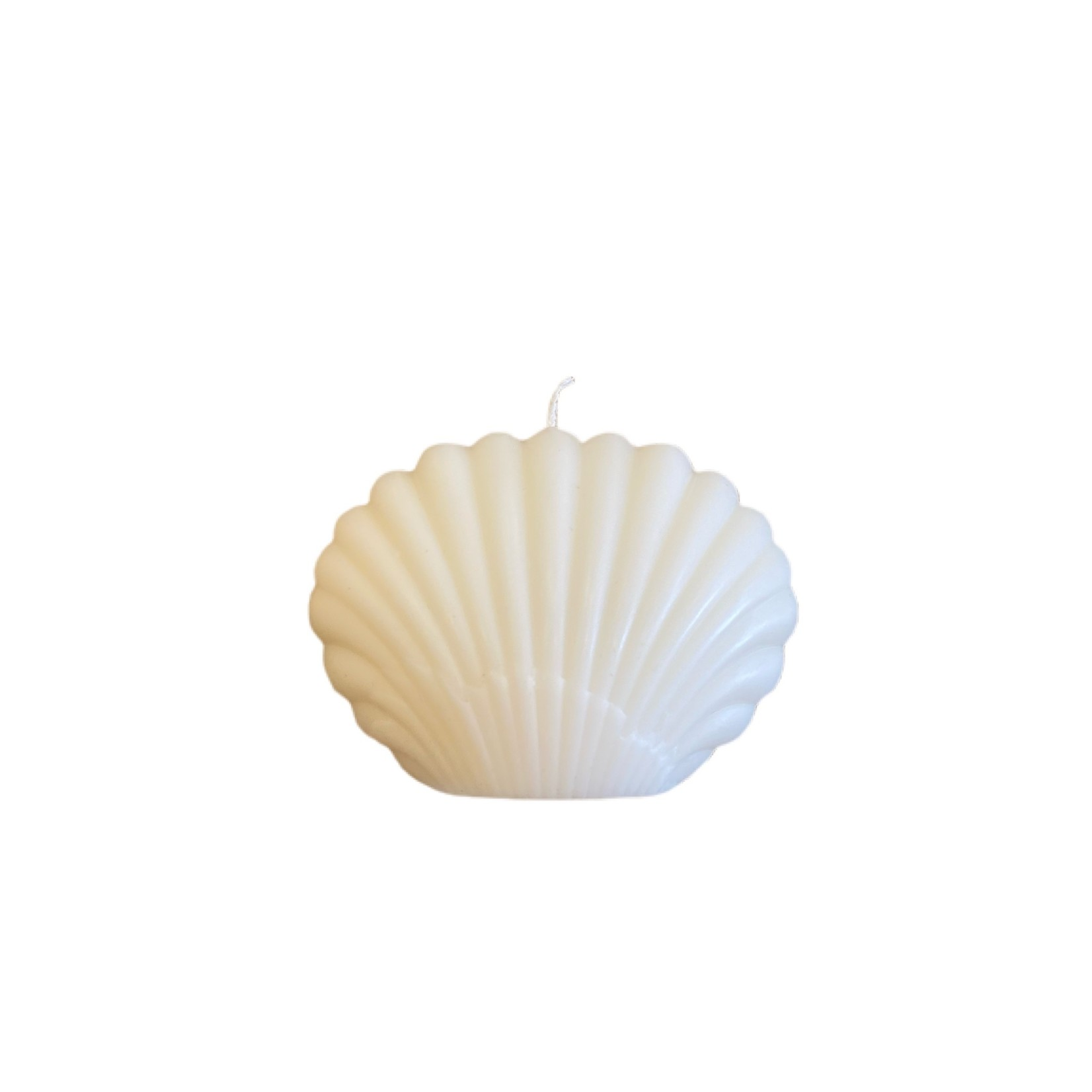Wyld Blue Home Shell Candle