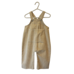 Wyld Blue Kids Chord Overalls