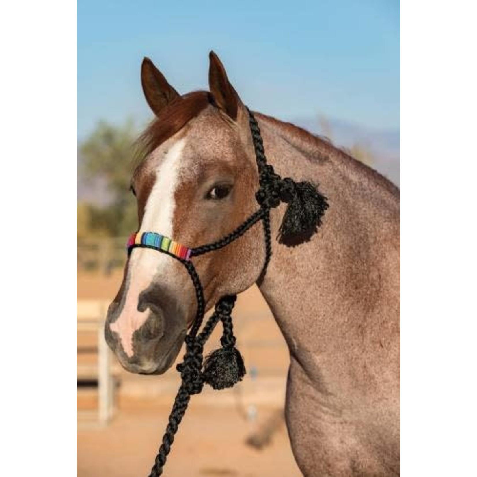 Professional's Choice PC  Cowboy Halter - Blk/Org
