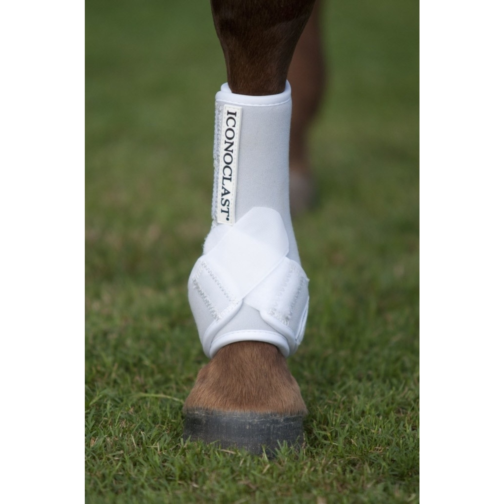 Iconoclast Hind Boots - W/Med