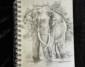 Ellie Pooh Journals