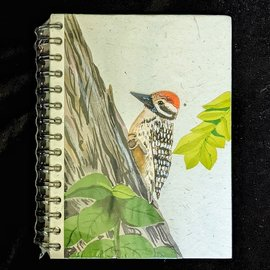 Ellie Pooh Journal - Woodpecker