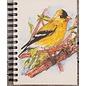 Ellie Pooh Journal - Goldfinch Sketch