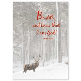 Package  Christmas Cards - Be Still and Know