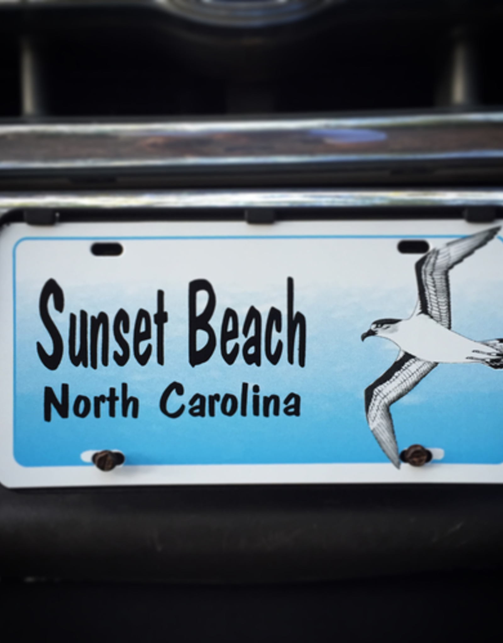 SIDE SEAGULL LICENSE PLATE