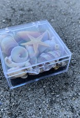 SHELL TREASURES BOX