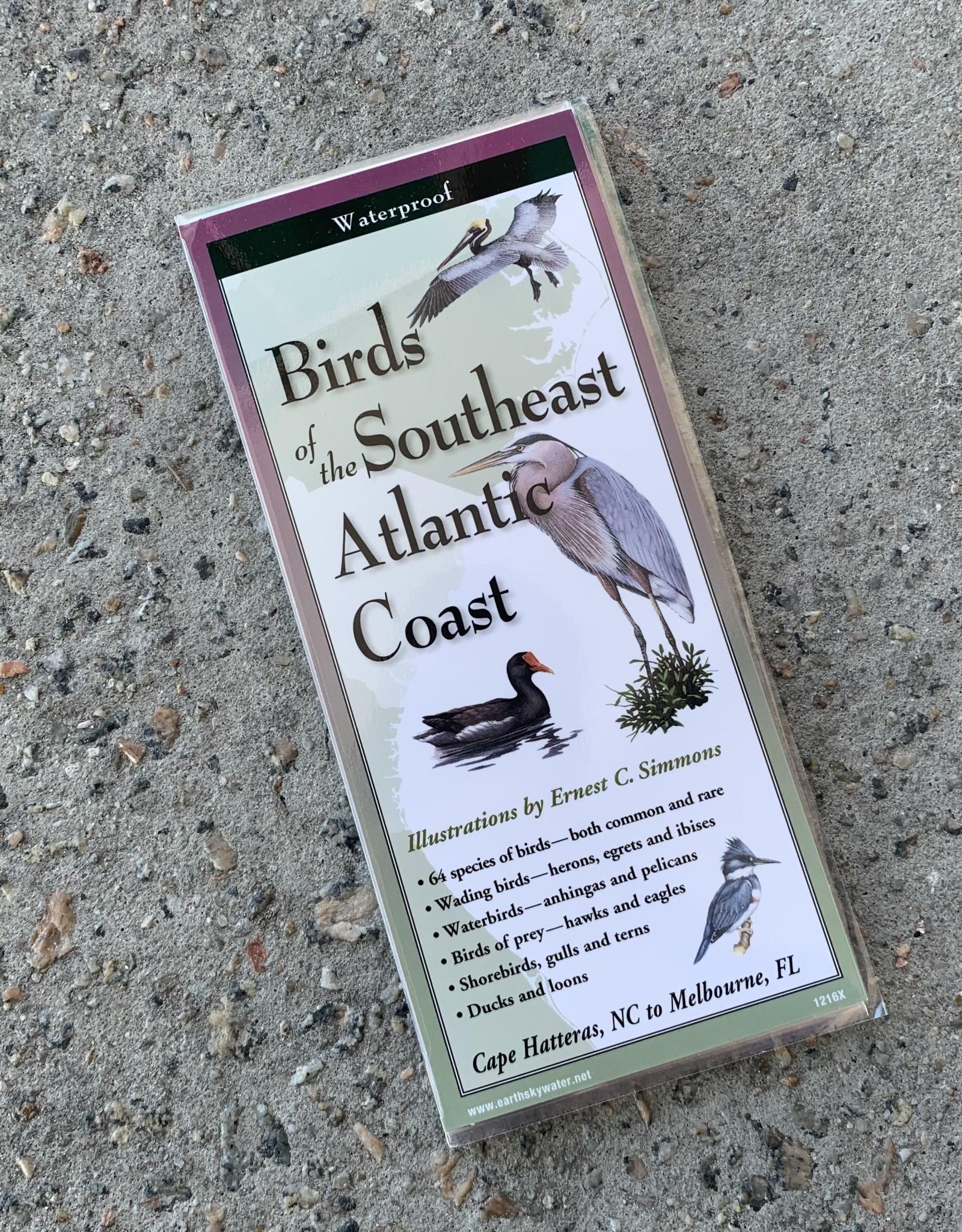FOLDING GUIDE BIRDS OF SE ATLANTIC