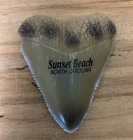 SHARK TOOTH PVC MAGNET
