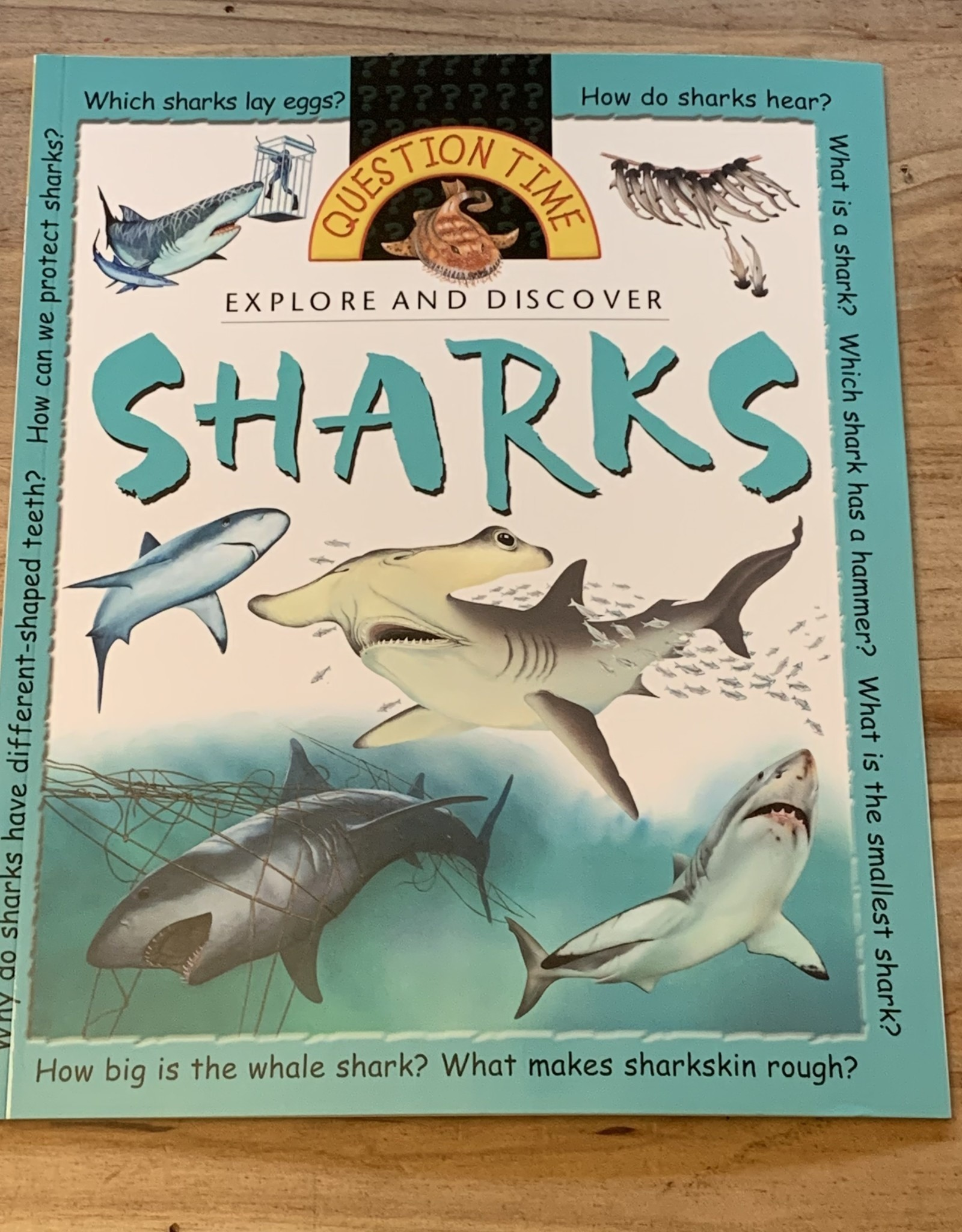 QUESTION TIME SHARKS