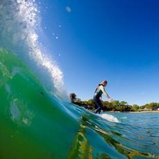 Surfari Women's Surf Night