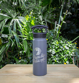 Thermal Water Bottle - Grey
