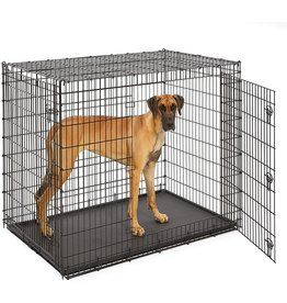 MidWest Homes for Pets Midwest SL54DD 'Ginormous' Double Door Dog Crate for XXL for the Largest Dogs Breeds, Great Dane, Mastiff, St. Bernard