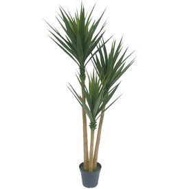 AMERIQUE AMERIQUE Gorgeous 6.3' Agave Artificial Tree Plant with 76 Leaves, Nursery Plastic Pot, Feel Real Technology, Green